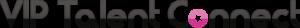 logo-vip-talent-connect